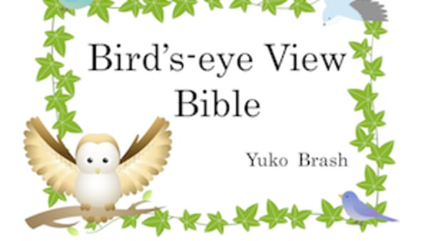 Bible resource - Bird's Eye View - Japanese and English
